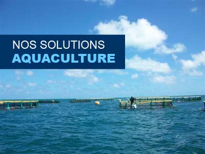 solutions aquaculture